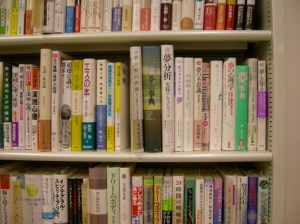 Dream Books in Japanese