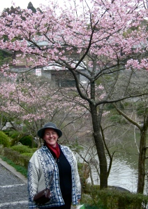 First cherry blossoms at Narita Temple